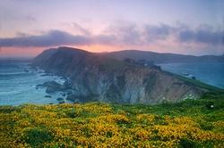 5 июня — Всемирный день охраны окружающей среды