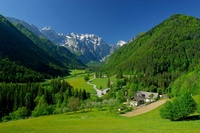 Лечение и отдых в Словении