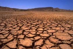 17 июня — Всемирный день борьбы с опустыниванием и засухой