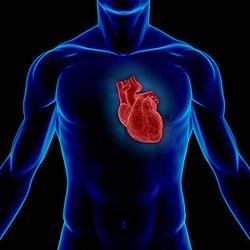 30 сентября 2012 — Всемирный день сердца