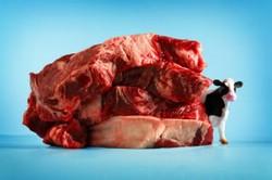 20 марта — Международный день без мяса