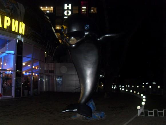 Харьков, дельфинарий «Нэмо»