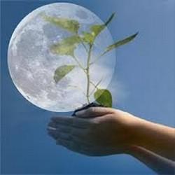 Лунный календарь для каждого дня