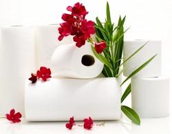 Бумажные полотенца — виды и изготовление